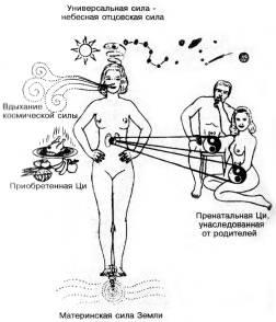 Как сублимировать сексуальную энергия
